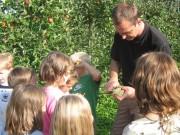 Kinder lernen etwas über Obst.